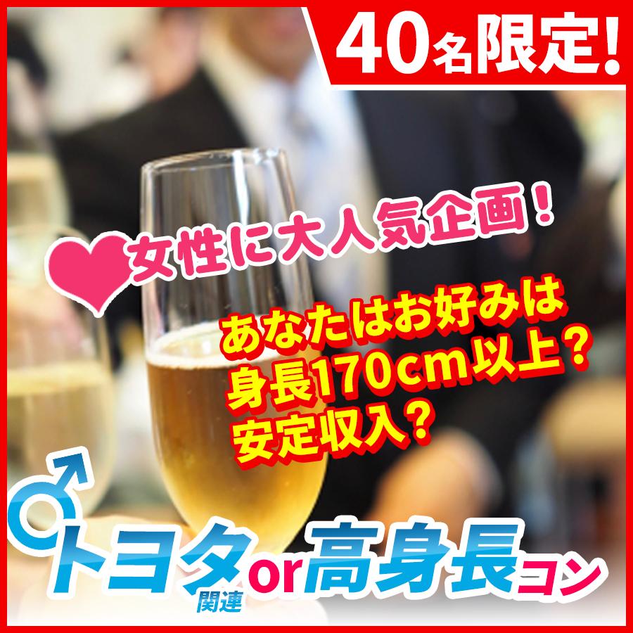 m_トヨタ高身長