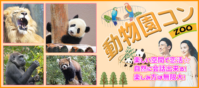 動物園コン