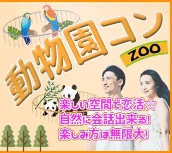 動物園コン_02